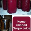 Home Canned Grape Juice