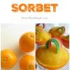 Orange Sorbet Pots of Gold