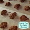 Peanut Free No-Bake Cookies {Foodie Friday}