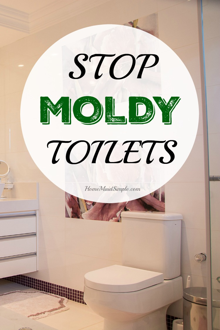 Stop Moldy Toilets | Home Maid Simple