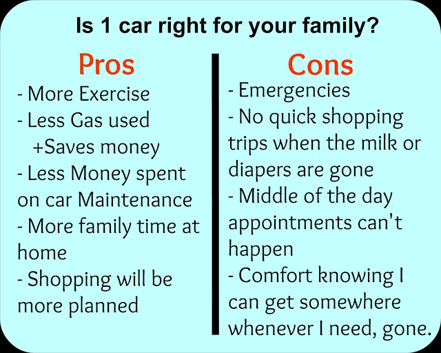 pros and cons to owning one car