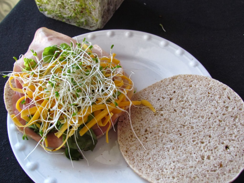 Alfalfa sprouts on Sandwich thins