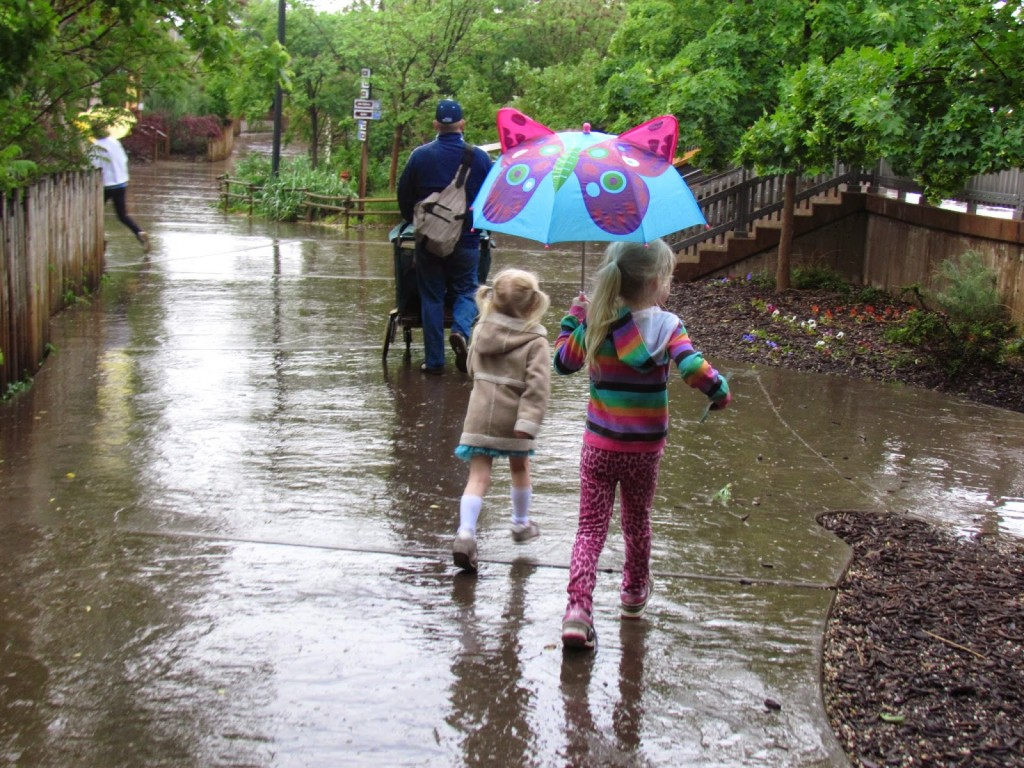 visiting Hogle Zoo in the Rain