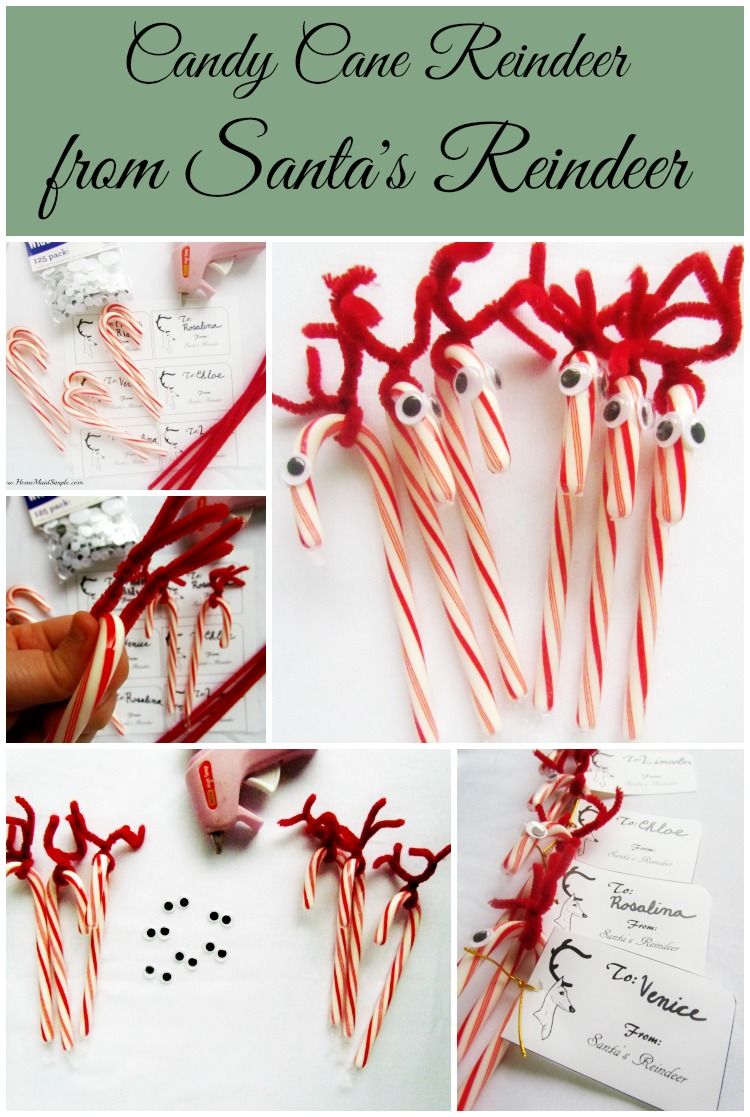 Candy Cane Reindeer from Santa's Reindeer