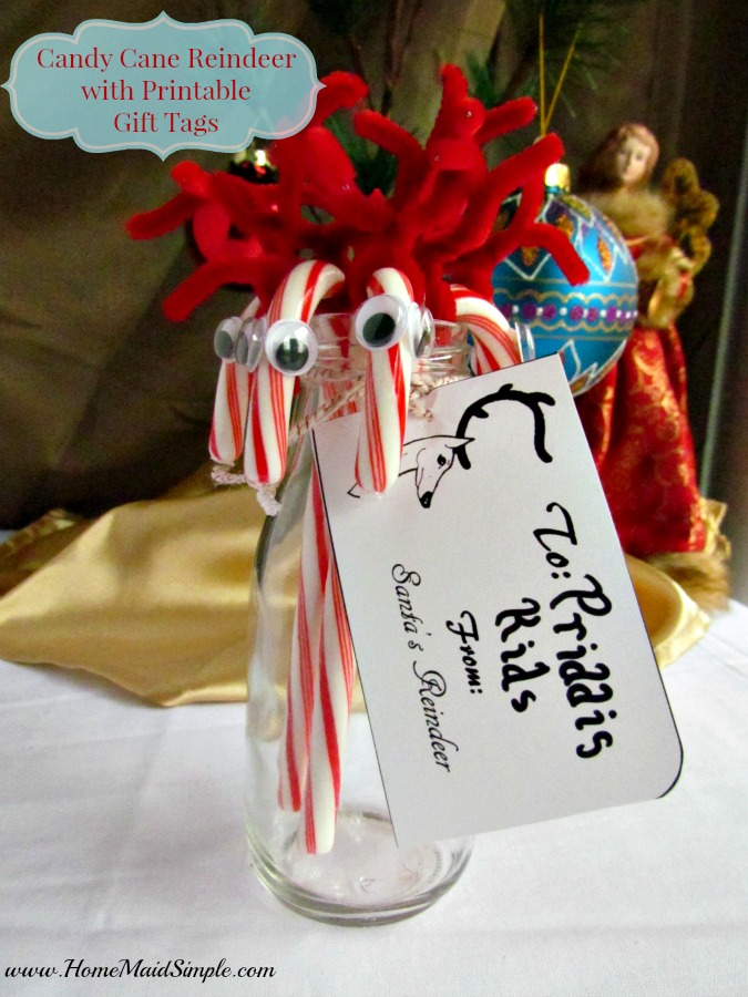 Leave a treat for Santa's Reindeer and enjoy the Candy Cane Reindeer Santa's Reindeer leave behind