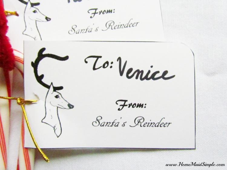 Santa's Reindeer Gift Tags