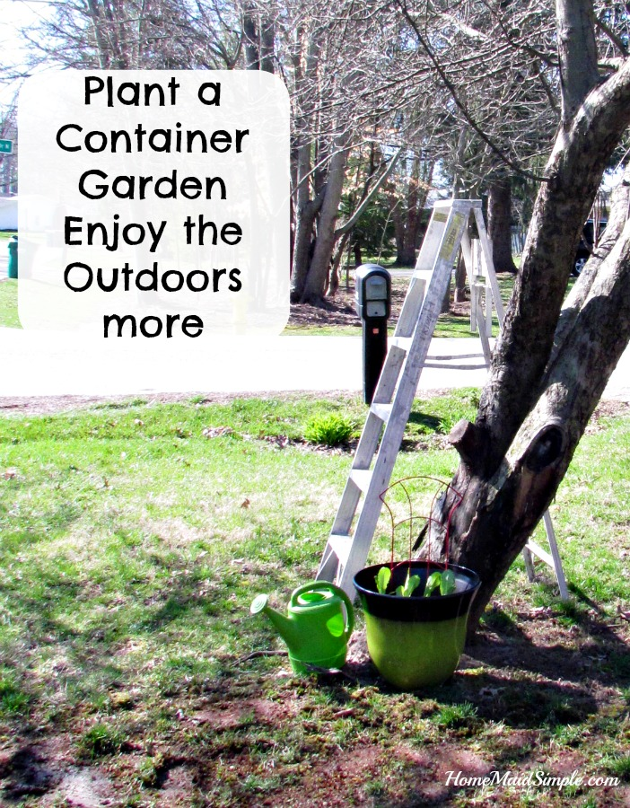 Take the morning and plant a Container Veggie Garden, and repair any bare spots in your lawn with Scotts® EZ Seed® #LoveYourLawn #ad