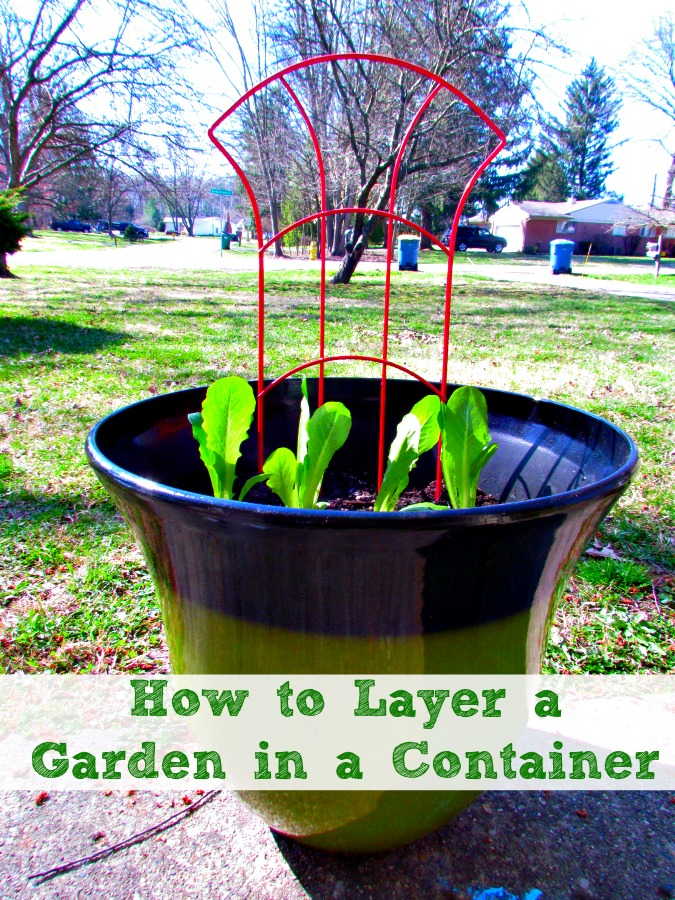 Layer a veggie garden in a container is easier than you might think. #LoveYourLawn #ad