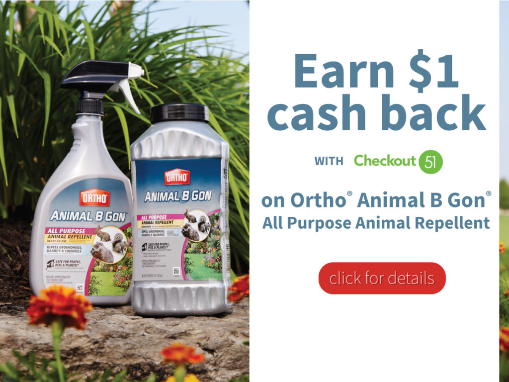 Earn $1 cash back on Ortho® Animal B Gon® with Checkout 51. #OrthoProtects ad