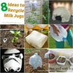 8 Ideas for Recycling Milk Jugs