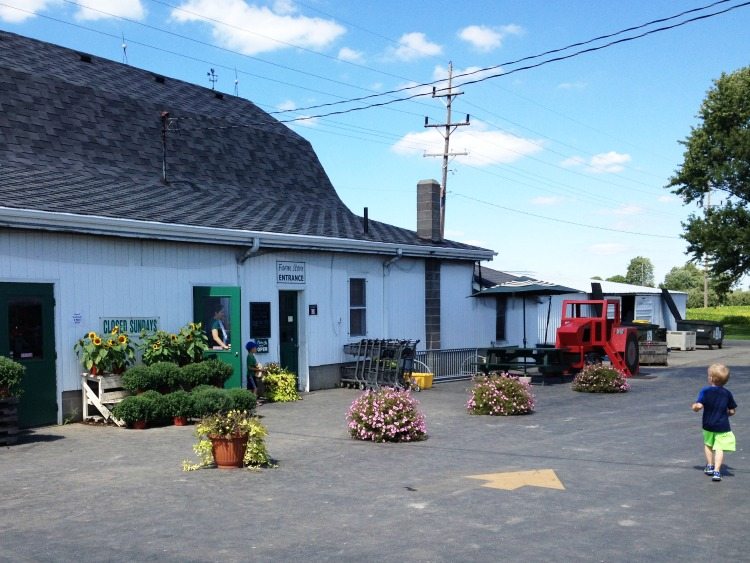 Visit the Farm Store at Tuttle Orchards.
