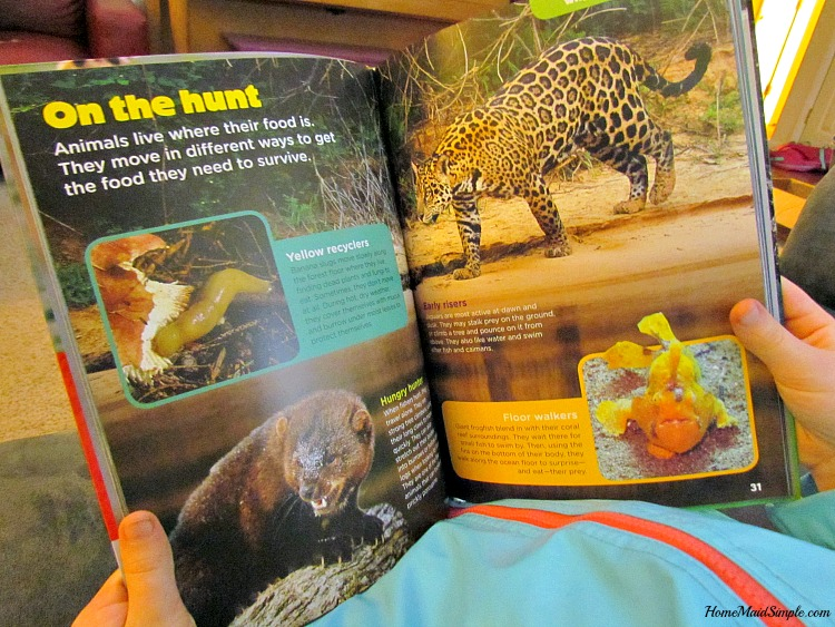 Check out the newest Animal Bites books from Animal Planet - Animals on the Move. ad