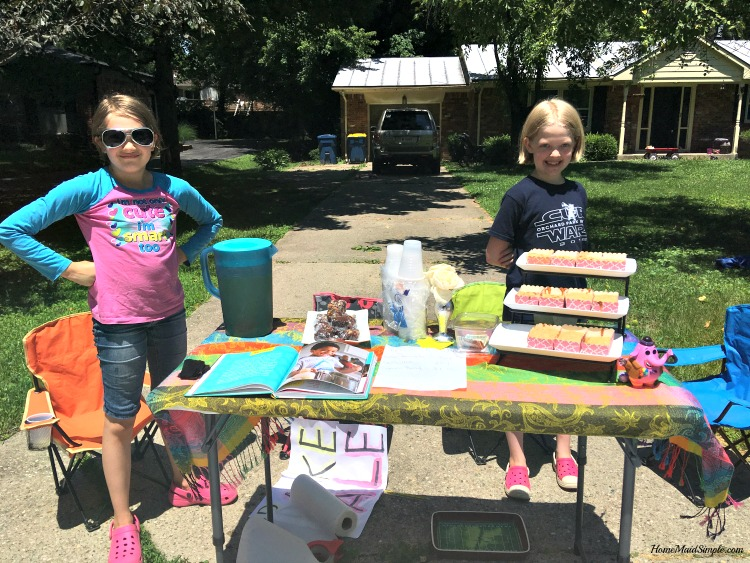 The Lemonade Stand by Kathy Strahs helps kids fight boredom and make a little side money. ad