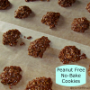 Peanut Free No-Bake Cookies {Foodie Friday}