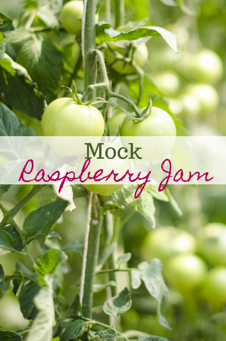 Mock Raspberry Jam and other things to do with Green Tomatoes