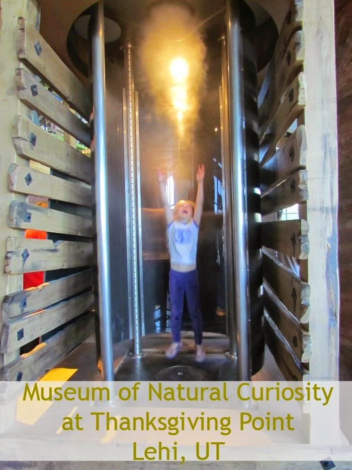 Backyard Tourist: Museum of Natural Curiosity