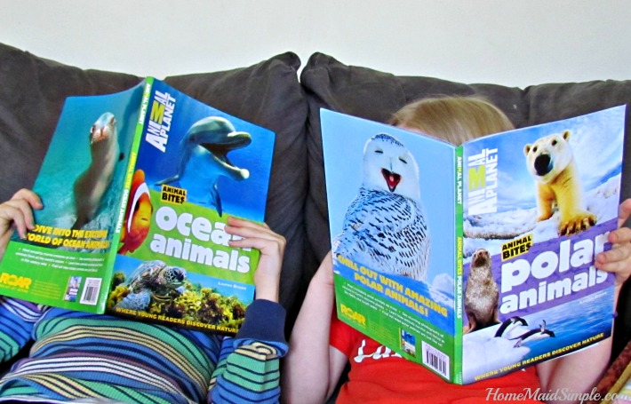 Animal Planet Animal Bite Books