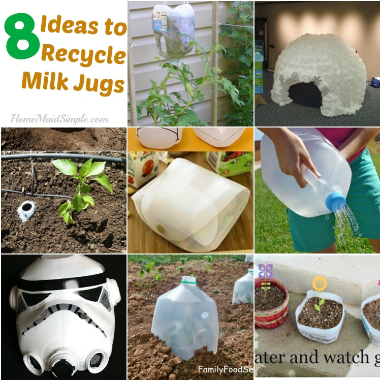 8 simple ideas for recycling Milk Jugs and celebrating Earth Day
