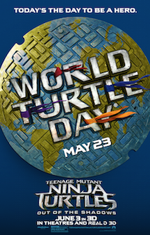 World Turtle Day and an Anti-Bullying Message