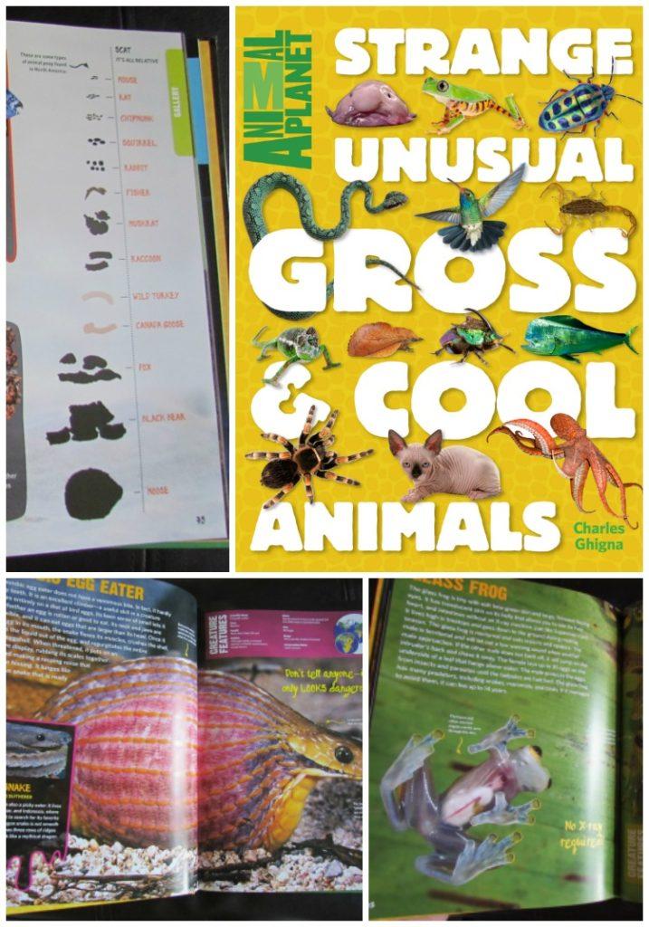 Strange, Unusual, Gross & Cool Animals by Charles Ghinga