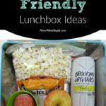 Allergy Friendly Lunchbox Ideas