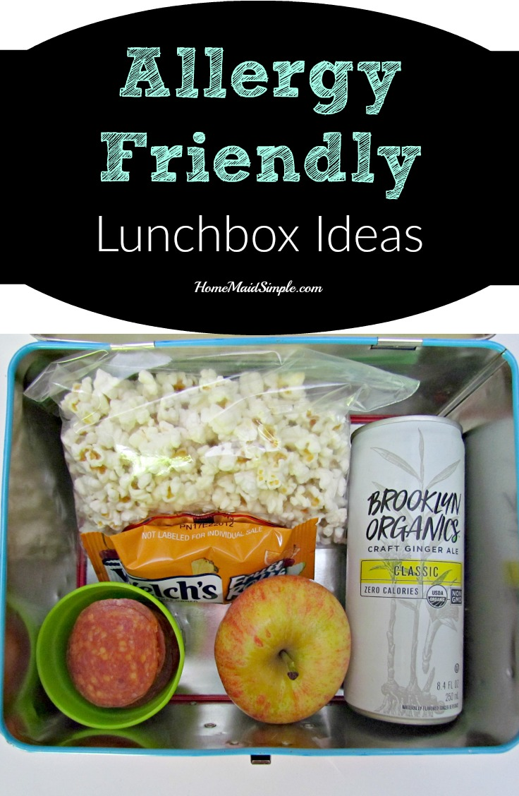 Grab these allergy friendly lunchbox ideas - free from top food allergies, nuts, dairy, wheat, and soy. ad
