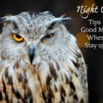 Good Mornings for Night Owls by Christine Hill