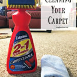 Spring Clean Your Carpet! Try these tips to keep your carpets nice all the time.