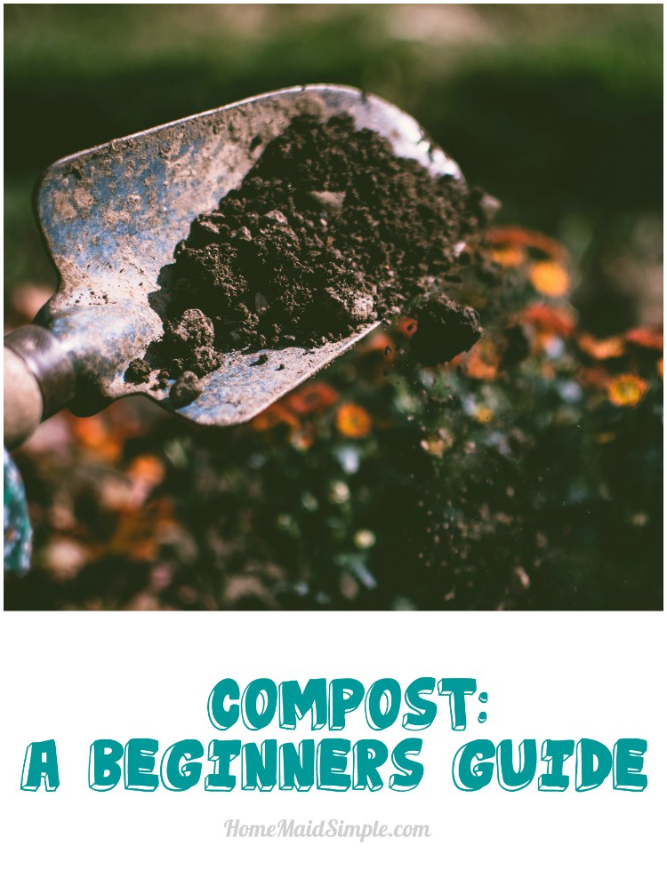 A beginners guide to compost. How to start and what you need to know.