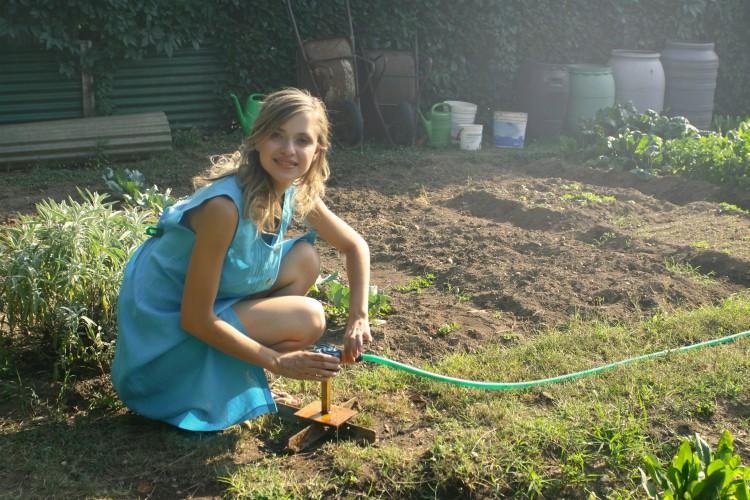 Gardens love compost!